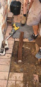 tangled-tree-roots-drainage